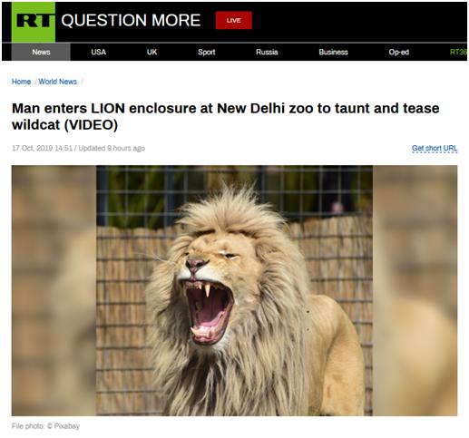 <b>狮口脱险!印度男子跃入狮子围栏与其共处,毫发无损奇迹生还</b>