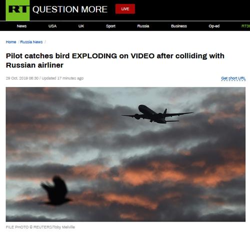 惨!鸟撞上客机挡风玻璃,画面不忍直视……
