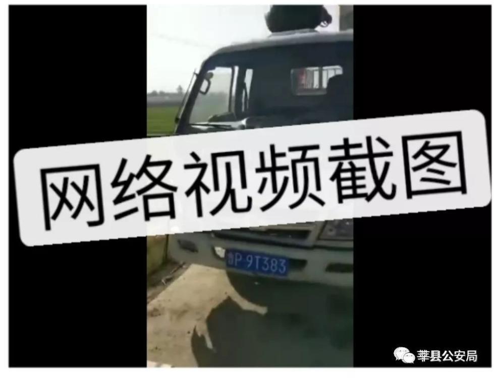 为保母猪不失重,山东男子小河边给猪灌水...警方通报!