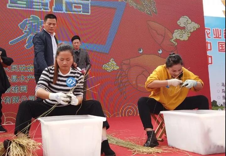 """安徽当涂举办""""螃蟹盛会"""" 引欧洲华商关注"""