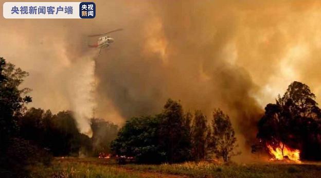 澳大利亚新南威尔士发生80余起大火 已致3死5失踪