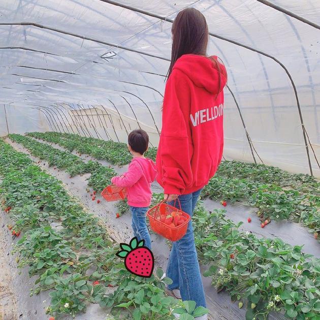 baby带小海绵采摘草莓 母子俩动作神同步
