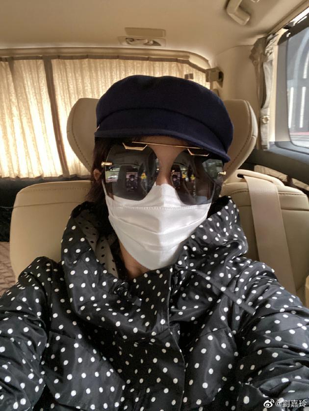 刘嘉玲为出门全副武装 帽子口罩墨镜一样不落