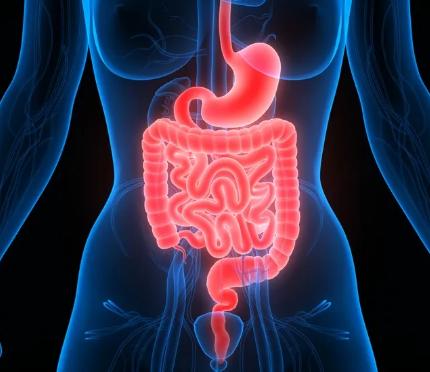 好好做一次腸鏡有多重要?一項長達17.4年的研究告訴你答案