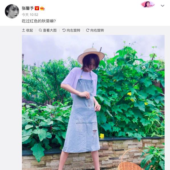张馨予穿拖鞋戴草帽下地摘蔬菜 纤瘦好身材超抢镜