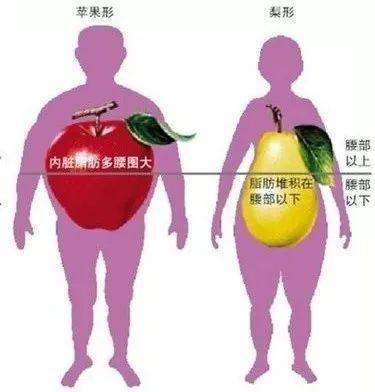 为什么看不见的胖更可怕?