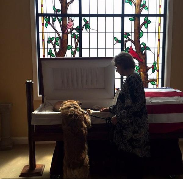 4月11日,安妮和宠物狗切尔夫向比尔道别