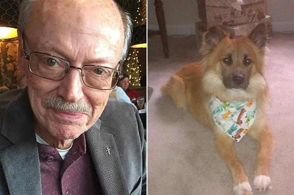 左图为76岁的比尔,右图为他的爱犬切尔夫