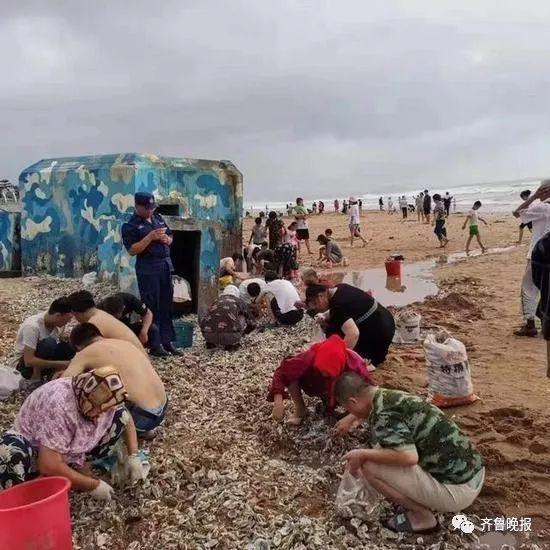 """而8月12日,台风""""利奇马""""过境青岛后,"""