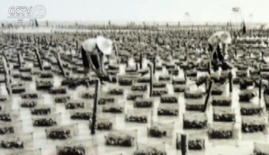 上世纪60年代,广西北海市珠农在海上进行传统木桩海水珍珠养殖作业;