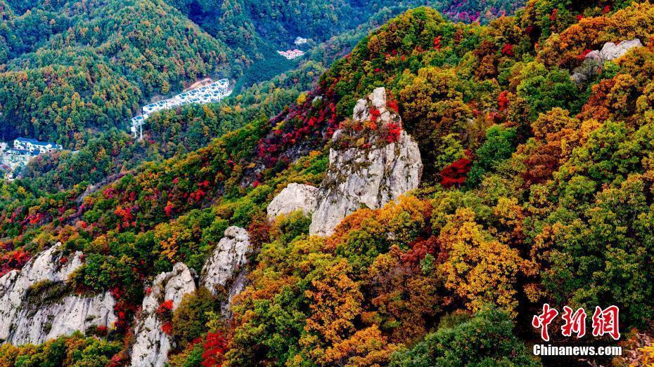 河南老君山入秋景色美如��