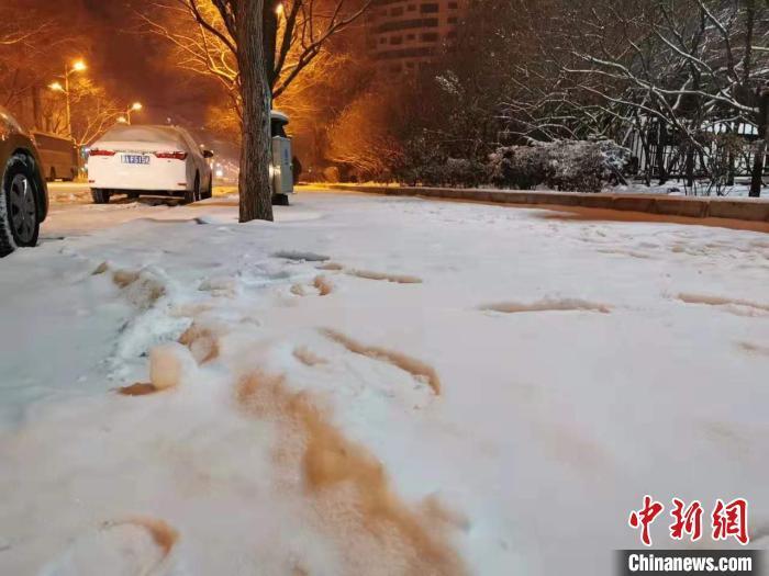 哈尔滨一夜之间被雪覆盖。网友供图