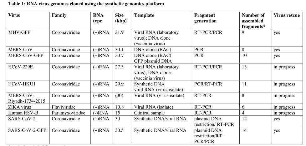 利用合成基因组学平台克隆RNA病毒基因组